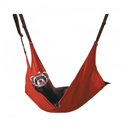 Marshall Ferret Hammock Red – cotton